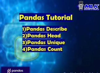 Pandas Tutorial - describe(),head(),unique() and count()