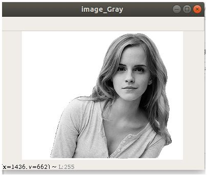 cv2.cvtColor() Gray Scale Conversion