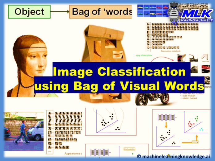 Image Classification using Bag of Visual Words Model-Feature Image