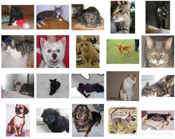 VGG16 Keras Implementation - Dogs vs Cats Dataset