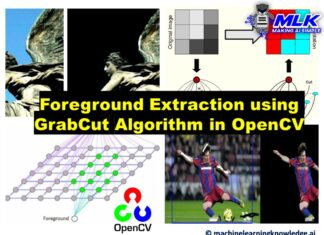 Foreground Extraction using Grabcut Algorithm in Python OpenCV with Example