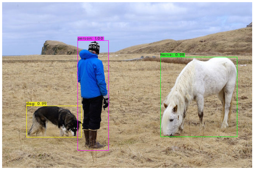 YOLOv4 object detection tutorial on Image