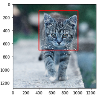 Example of Rectangle in OpenCV Python
